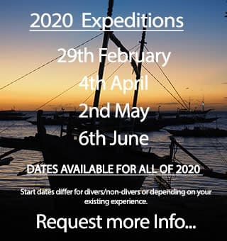 Expedition dates for ocean conservation oportunities in the Philippines