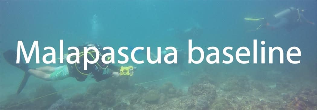 Conducting marine biophysical surveys are part of our marine conservtion work on Malapascua