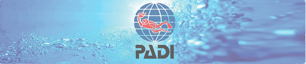 PADI courses are taught to all expedition volunteers before collecting survey data