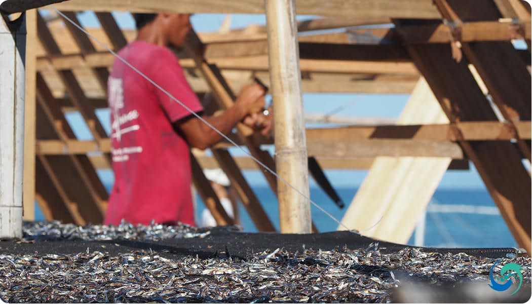 Fishing and boat building provide the local communities with its income.